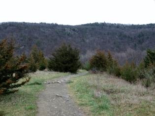 Applachian Trail - Wawayanda Mountain