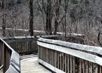 Paul F. Wildermann Boardwalk