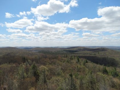 360 degree views from the fire tower.