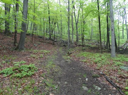 Suffern-Bear Mountain Trail