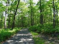 Appalachian Trail/Ramapo-Dunderberg (R-D) Trail