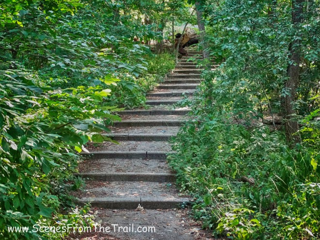 stairs on the blue trail