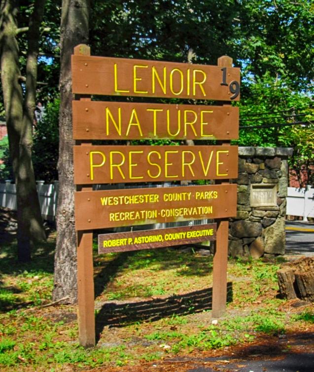 Lenoir Preserve