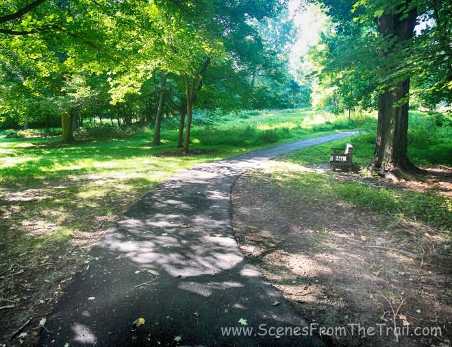blacktop path