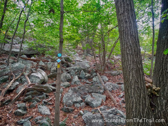 the climb out of the ravine