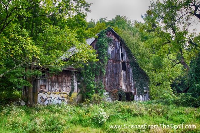 rear of the barn