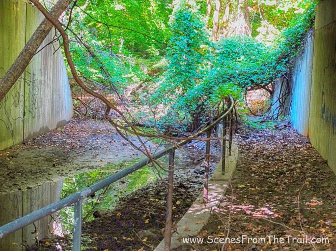Rockwood Hall Brook