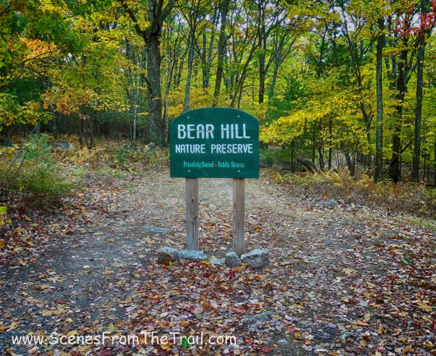 Bear Hill Nature Preserve