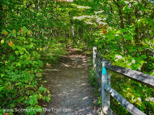 Long Path/escarpment trail