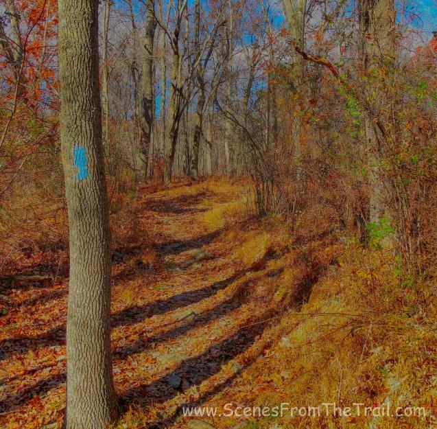 blue blazed connector trail