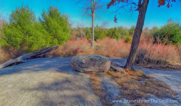 Ramapo-Dunderberg trail