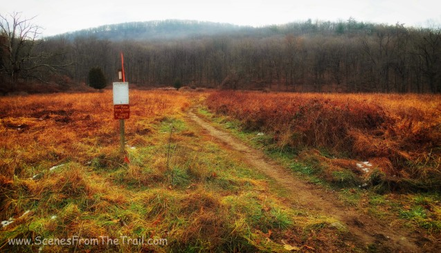 Appalachian Trail from Elk Pen