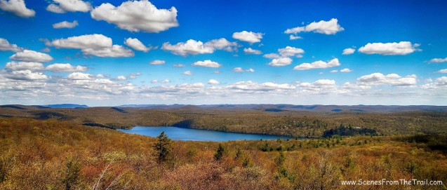 View towards Sterling lake from the Fire Tower