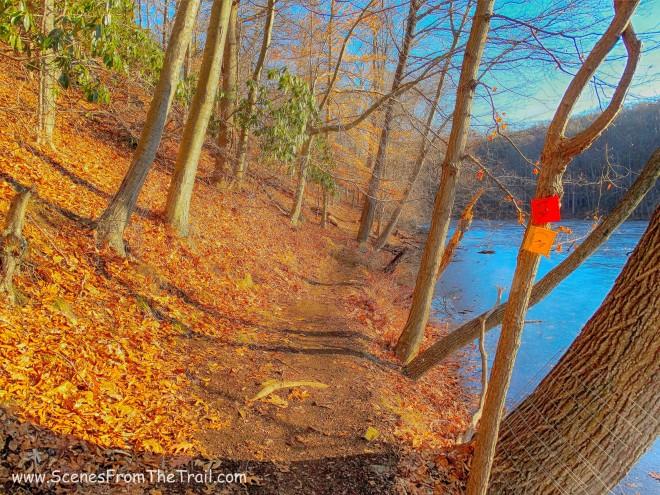 Twin Lakes Loop trail