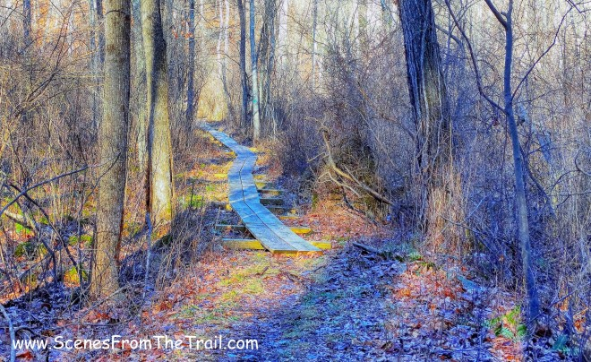 wooden puncheons - green-blazed Briarcliff-Peekskill Trail