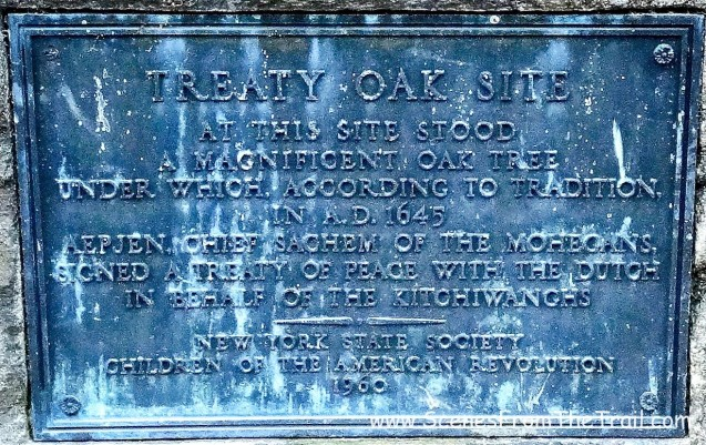 Treaty Oak Monument
