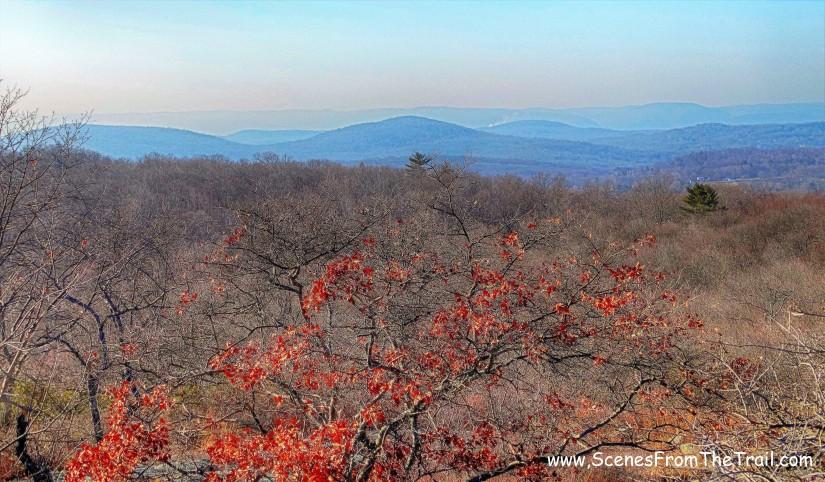 Turkey Mountain NaturePreserve