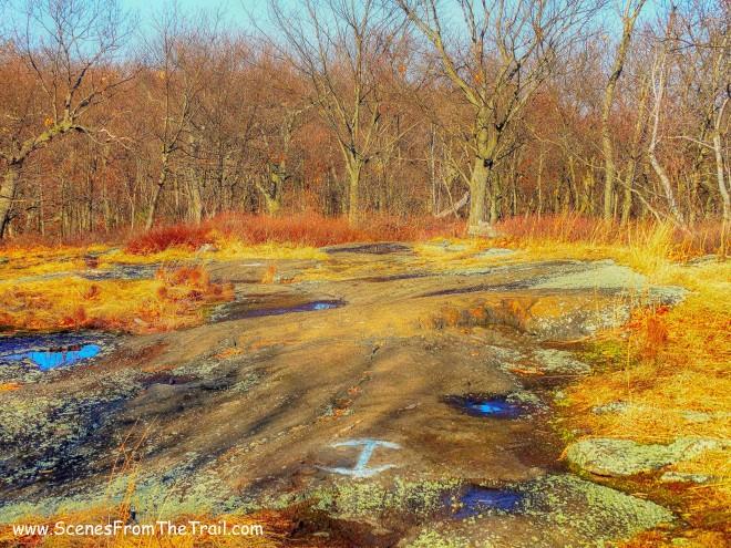 blue-blazed trail