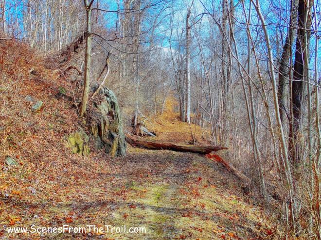 Raven's Rock trail