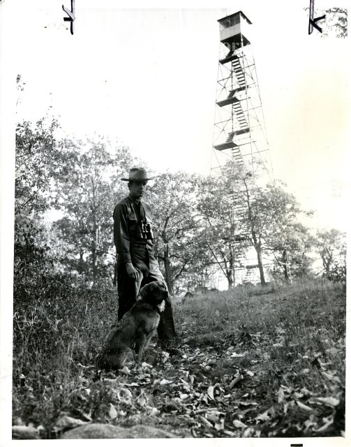 Nelson Mountain Fire Tower at Salt Hill - image courtesy of Westchester County Historical Society