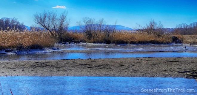 Fishkill Marsh