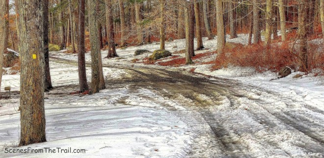 yellow-blazed Menomine Trail