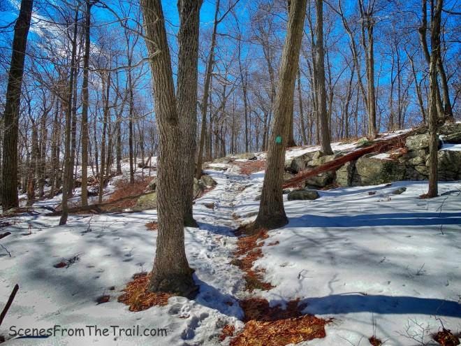 Long Path - Stockbridge Mountain
