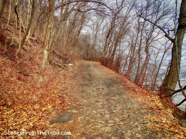 Shore Trail