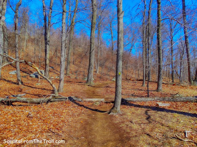 Vista Loop Trail