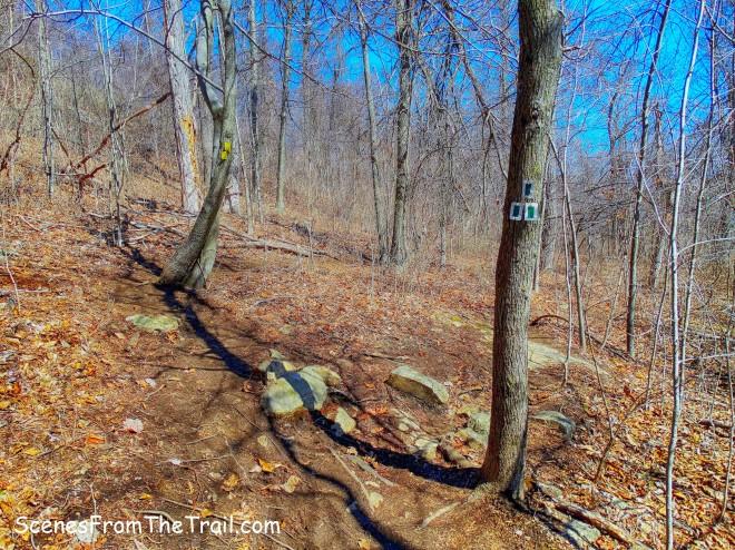 start of the Halifax Trail