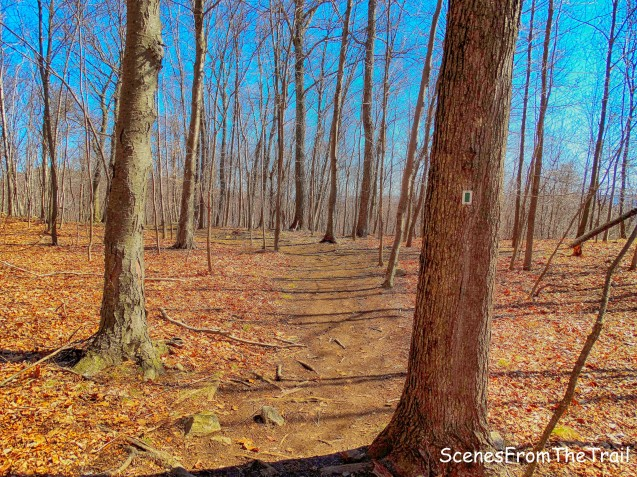 Halifax Trail