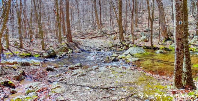 Havemeyer Brook - Halifax Trail
