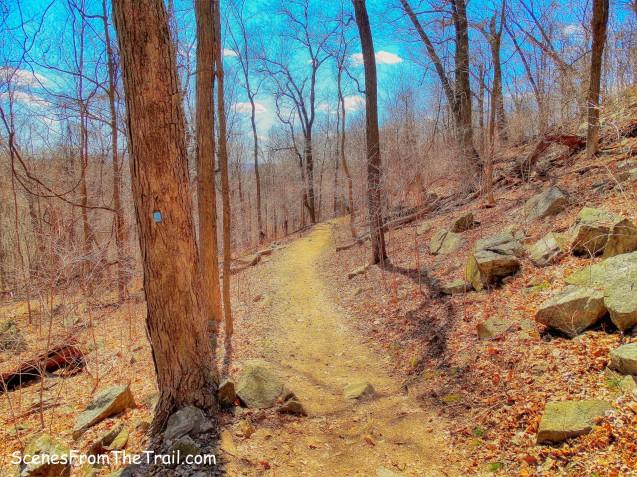 Blue-blazed Ridge Loop Trail