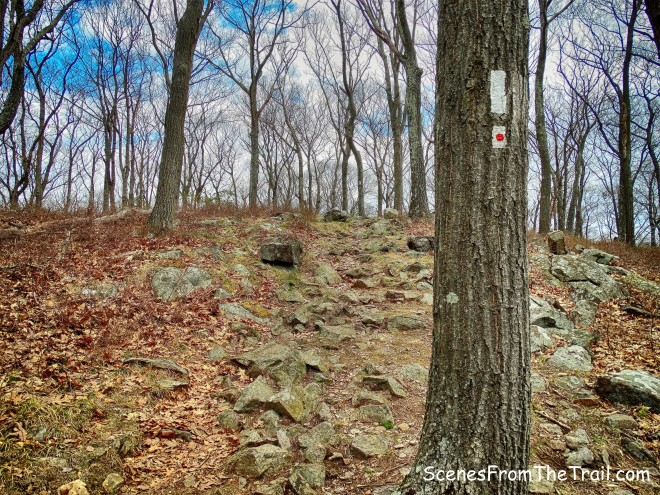 AT/R-D trail