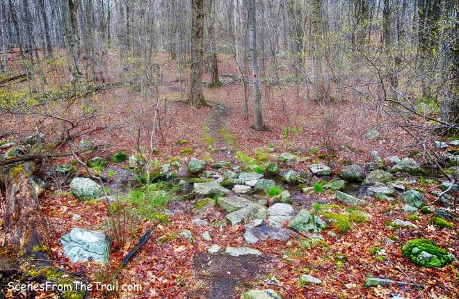 second stream crossing then climb