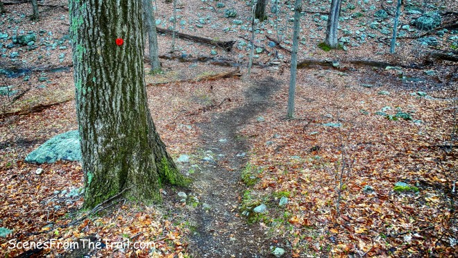 trail descends to cross another stream