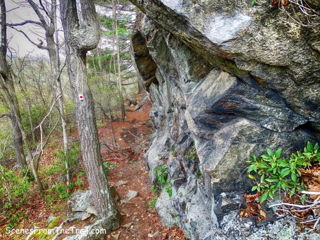 Ramapo-Dunderberg (R-D) Trail