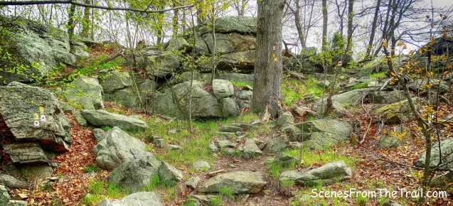 joint Ramapo-Dunderberg (R-D) Trail and Suffern-Bear Mountain (S-BM) Trail