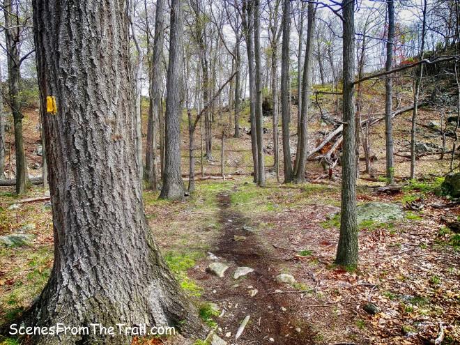 Suffern-Bear Mountain (S-BM) Trail