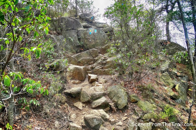 joint Timp-Torne Trail and Suffern-Bear Mountain Trail