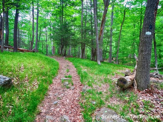 White Bar Trail