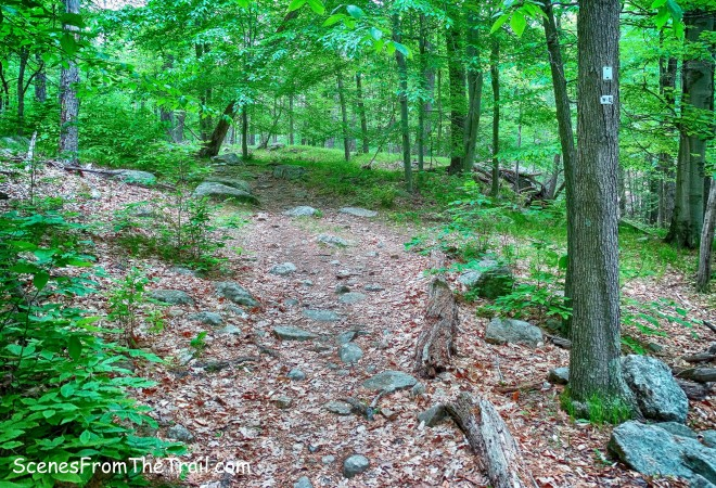 joint White Bar Trail and Nurian Trail