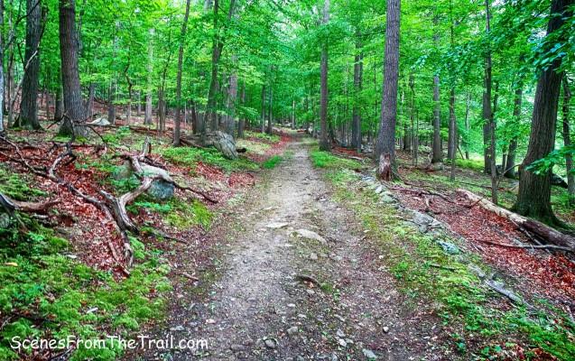 Doodletown Bridle Path
