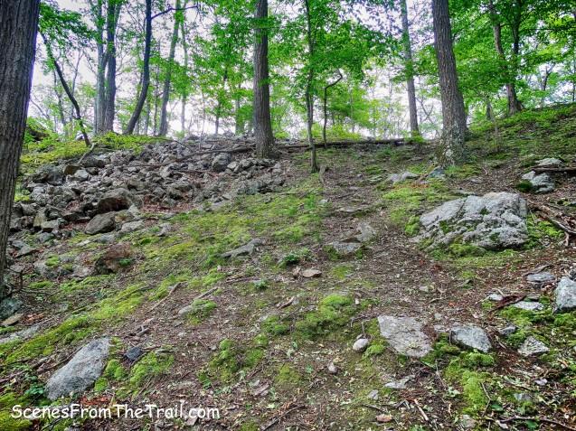 the path to Edison Mine