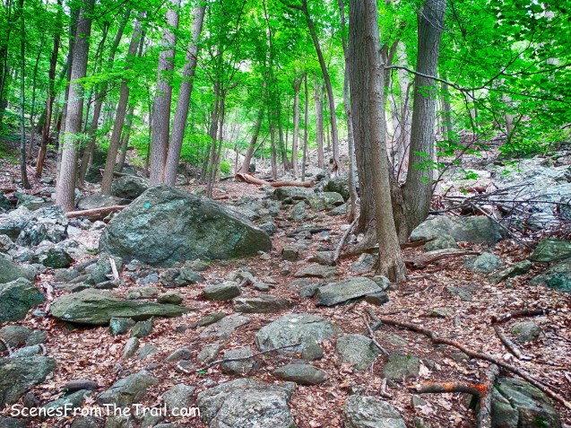 Cornell Mine Trail