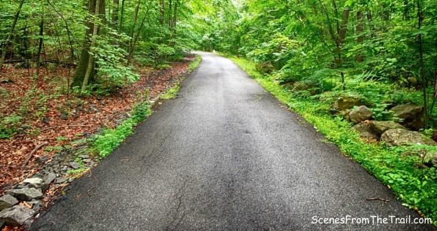 Woodtown Road