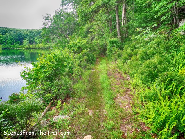 unmaintained trail - Third Reservoir