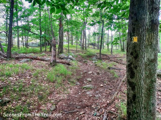 yellow-blazed Suffern-Bear Mountain (S-BM) Trail