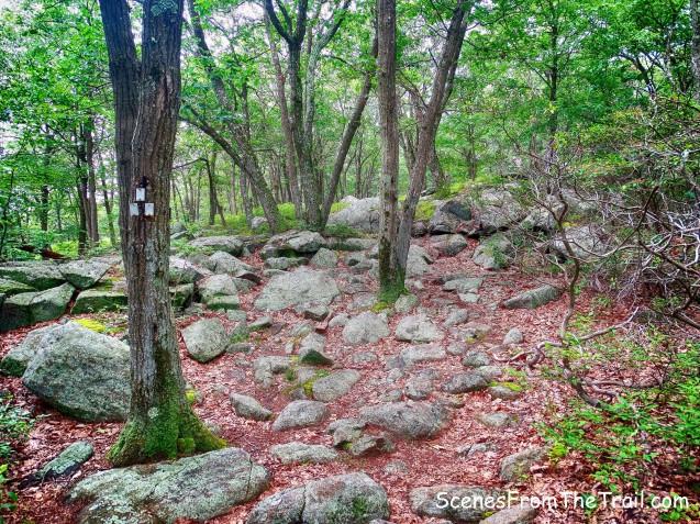 Breakneck Mountain Trail