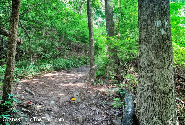 Upper Nyack Trail/Long Path junction